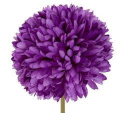crisantemoweb.jpg