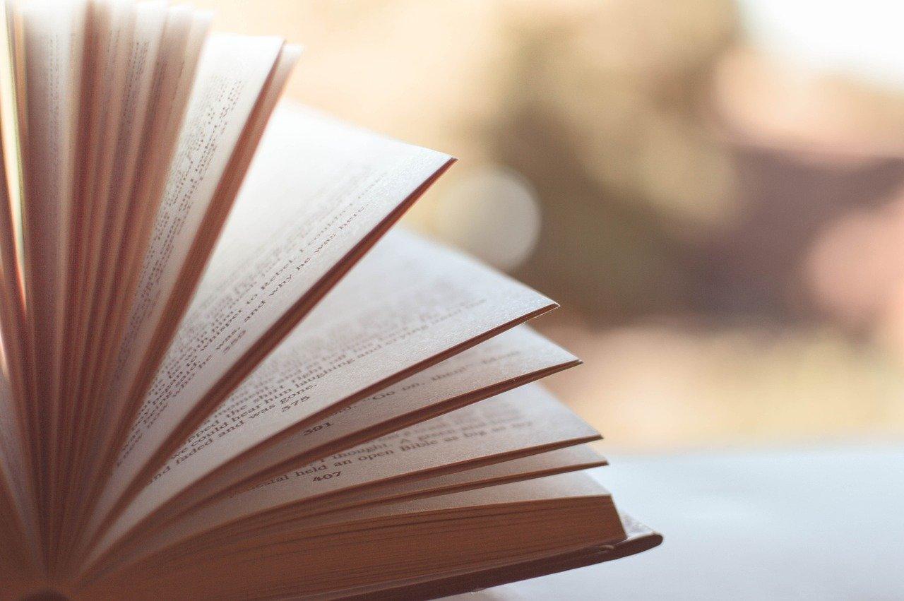 Presentem llibres escrits per infermeres