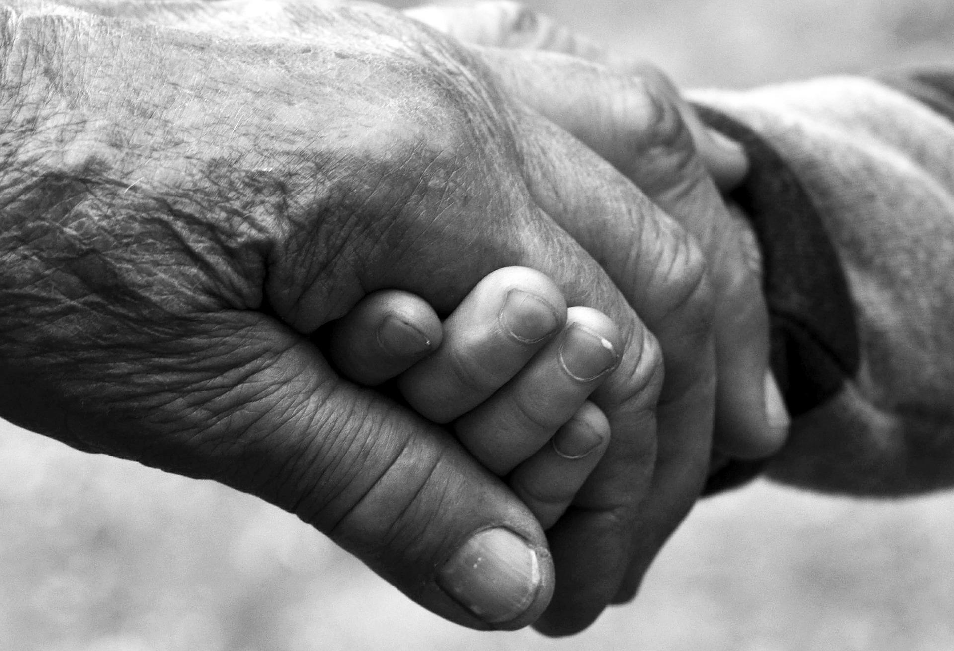 El COIB s'adhereix al manifest per aturar el maltractament a les persones grans