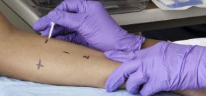 Les infermeres catalanes d'al·lergologia i immunologia clínica debaten les al·lèrgies en adolescents