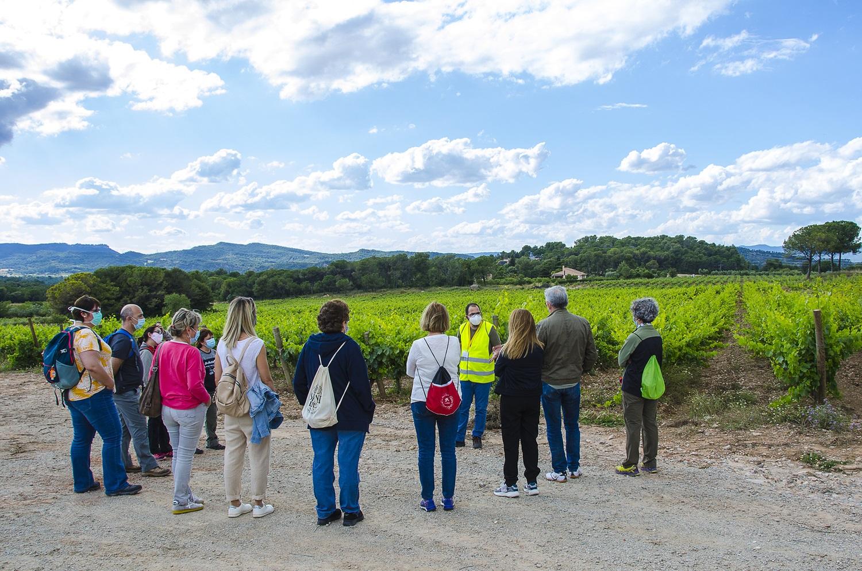 La Delegació de l'Anoia del COIB visita les vinyes del Celler Pla de Morei